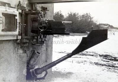 Canon47 photo4